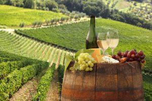 Вино - социальный напиток