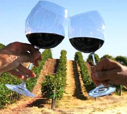 Tocai - ароматическое сухое белое вино