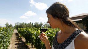 Какое вино идет с какой пищей?